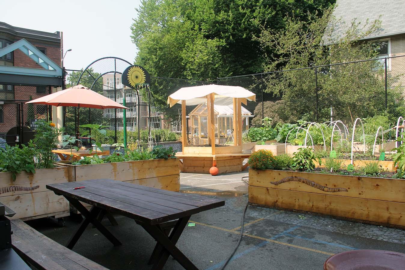Environment Farm Garden