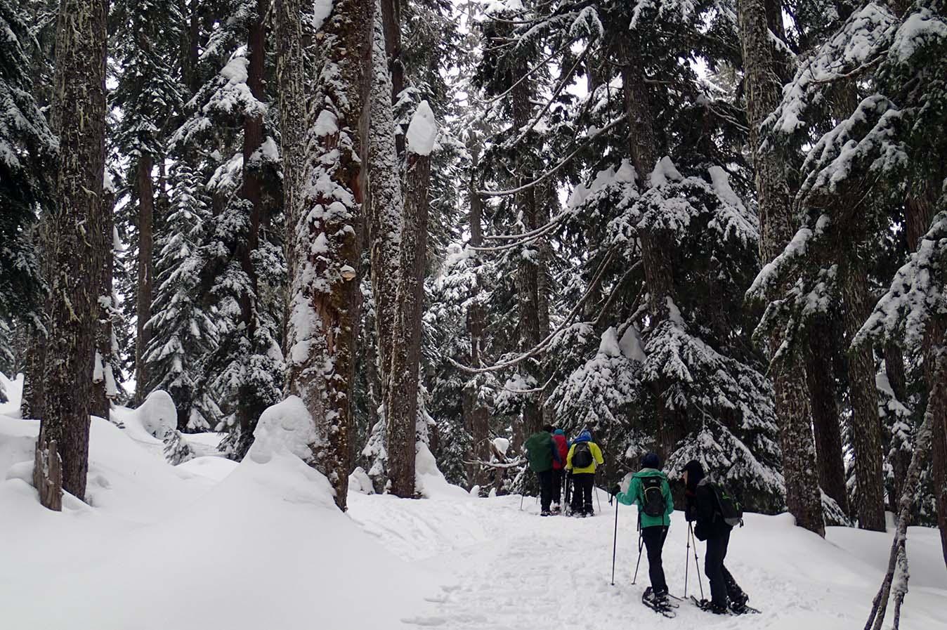 Snowshoeingtrip